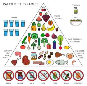 Paleo-Diet-Pyramide