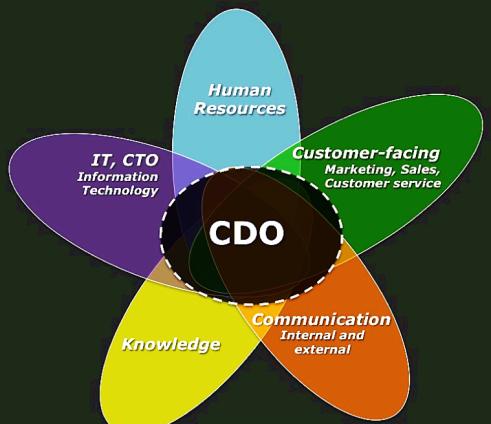 Chief Digital Officer à la croisée de plusieurs fonctions