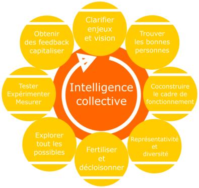 roue de l'intelligence collective